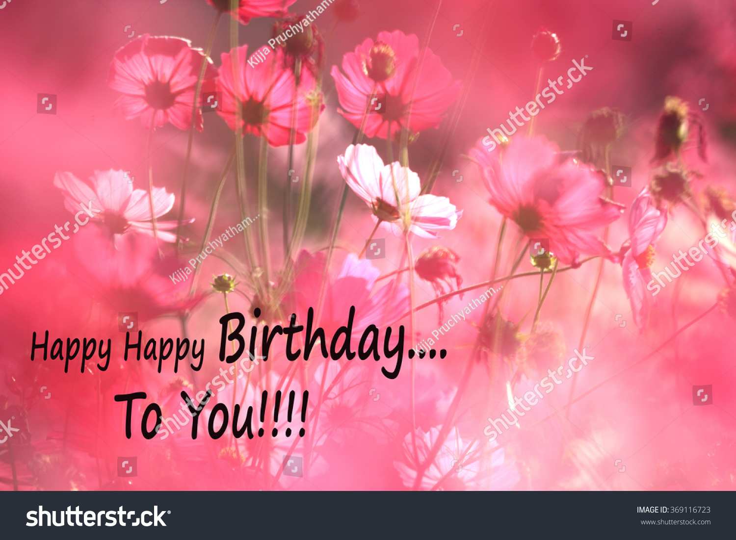 Birthday Card Message Cosmos Flowers Dancing Stock Photo Edit Now