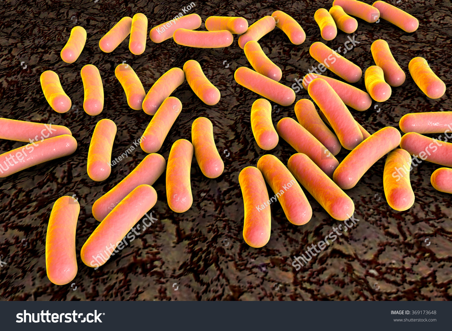 pseudomonas aeruginosa and nosocomial infections Methods ii virulence patterns of pseudomonas aeruginosa nosocomial strains associated with different clinical infections ani.