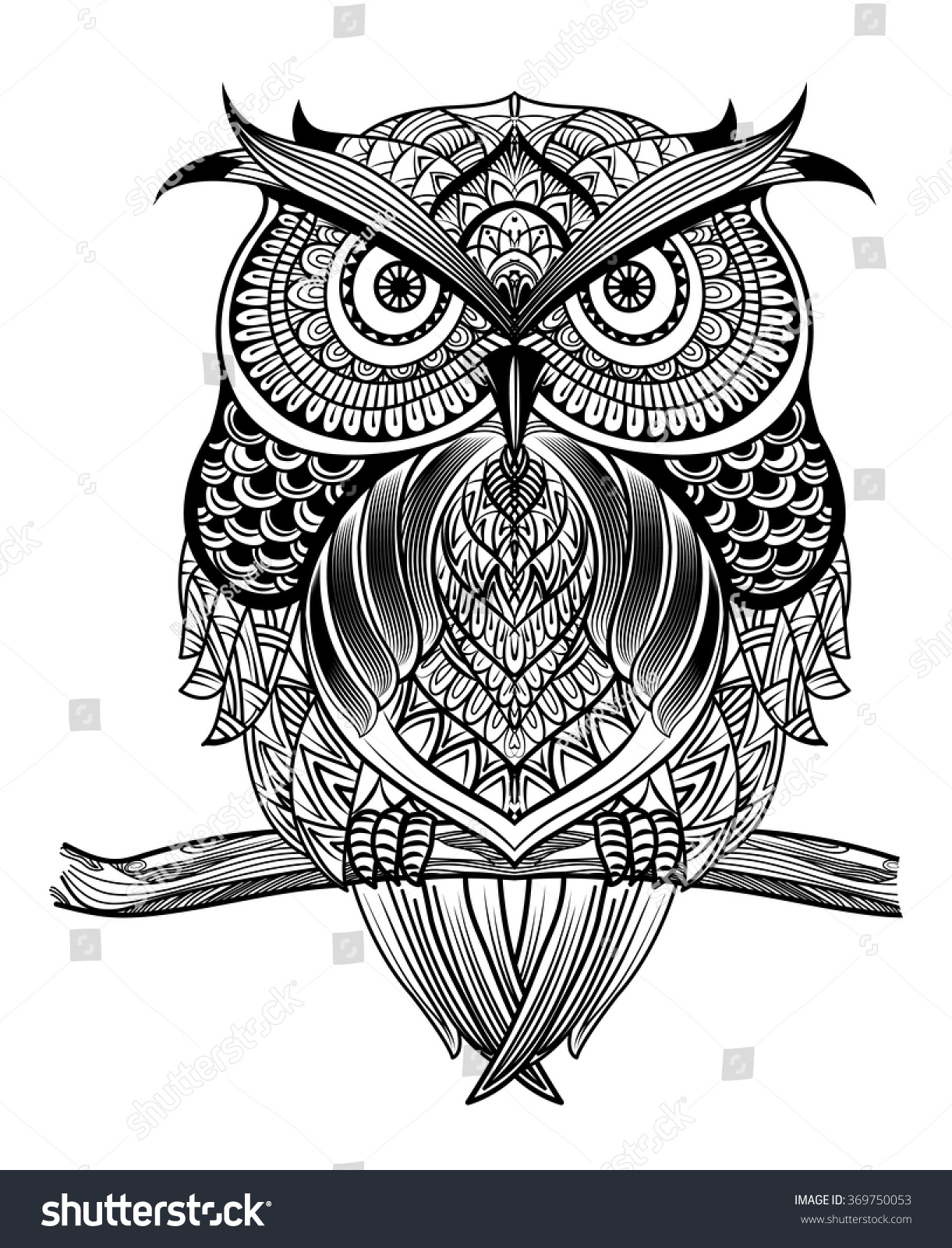 vector hand drawn owl sitting on stock vector 369750053 shutterstock