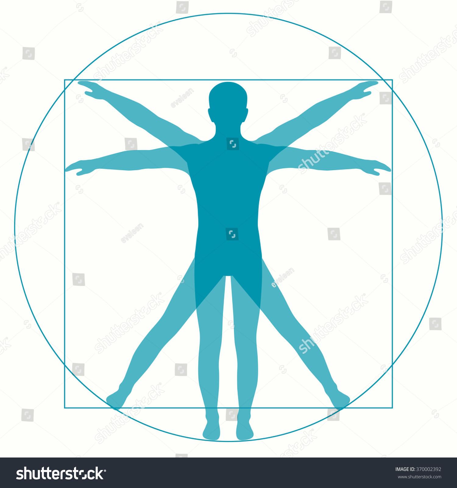 leonardo da vinci vetruvian man  human anatomy stock vector illustration 370002392 shutterstock Vitruvian Man High Resolution Vitruvian Man Realistic