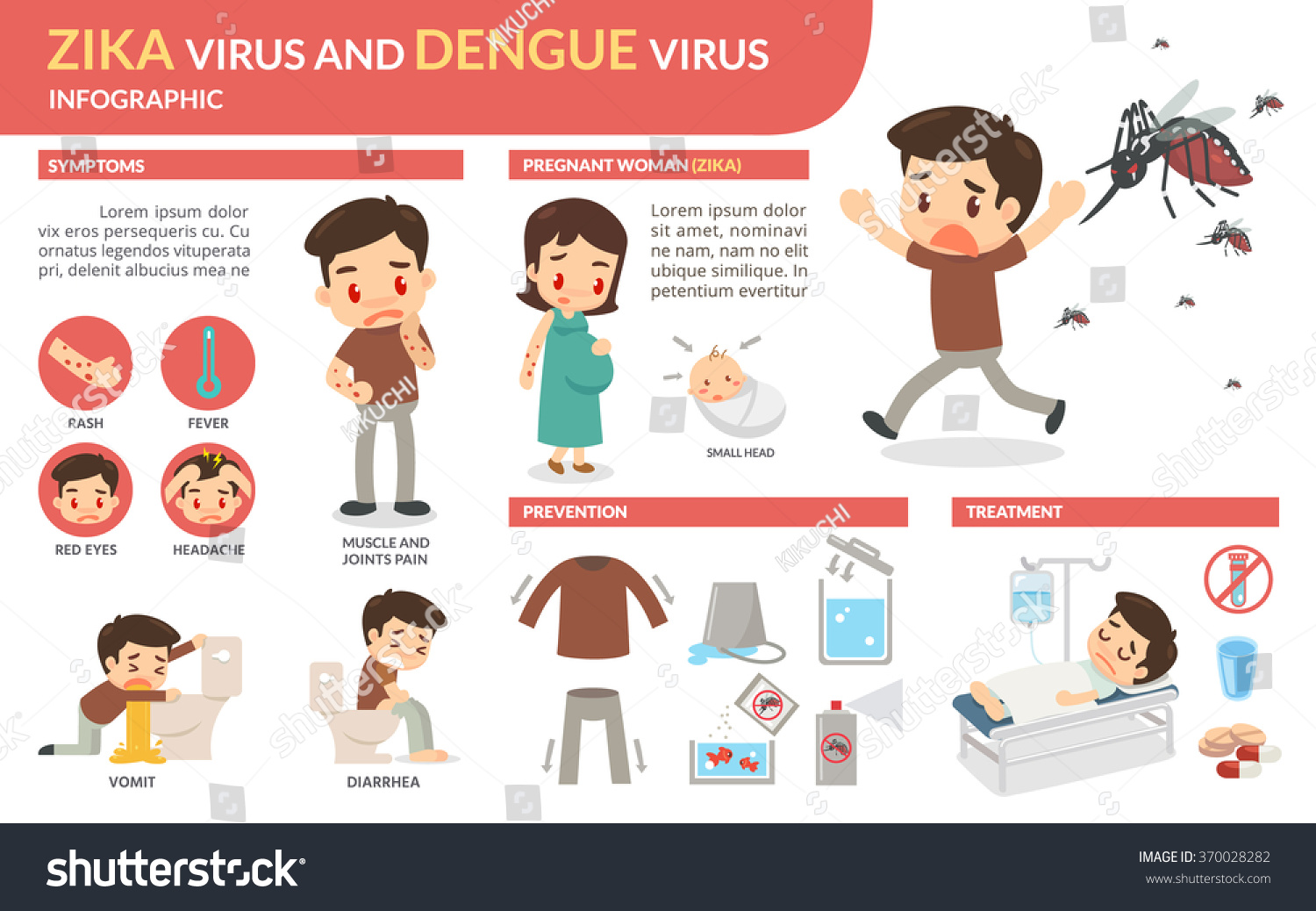 zika virus and dengue virus infographic  vector flat design