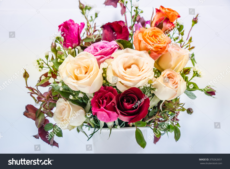 Close Up Vase Of Roses Bouquet On White Background Set Of Beautiful
