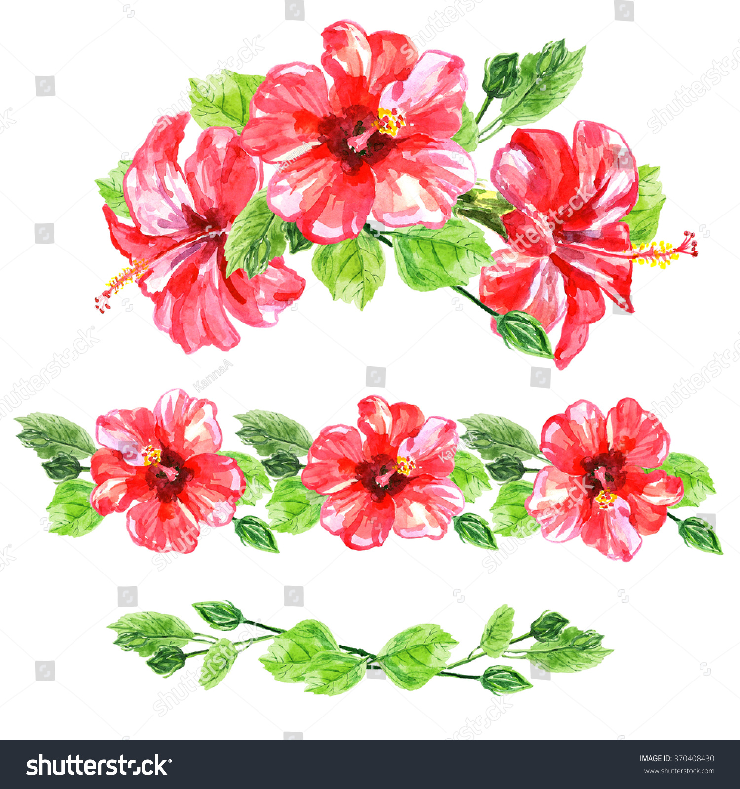 Set red watercolor hibiscus flower illustration stock illustration set of red watercolor hibiscus flower illustration isolated on white background colorful floral collection izmirmasajfo