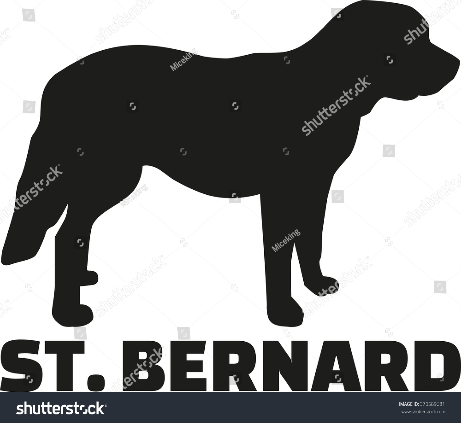 St Bernard Dog With Breed Name