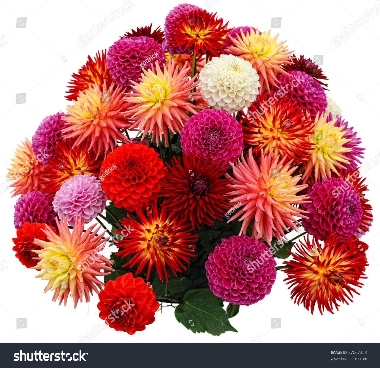 Flower arrangement chrysanthemums dahlias stock photo safe to use flower arrangement of chrysanthemums and dahlias izmirmasajfo