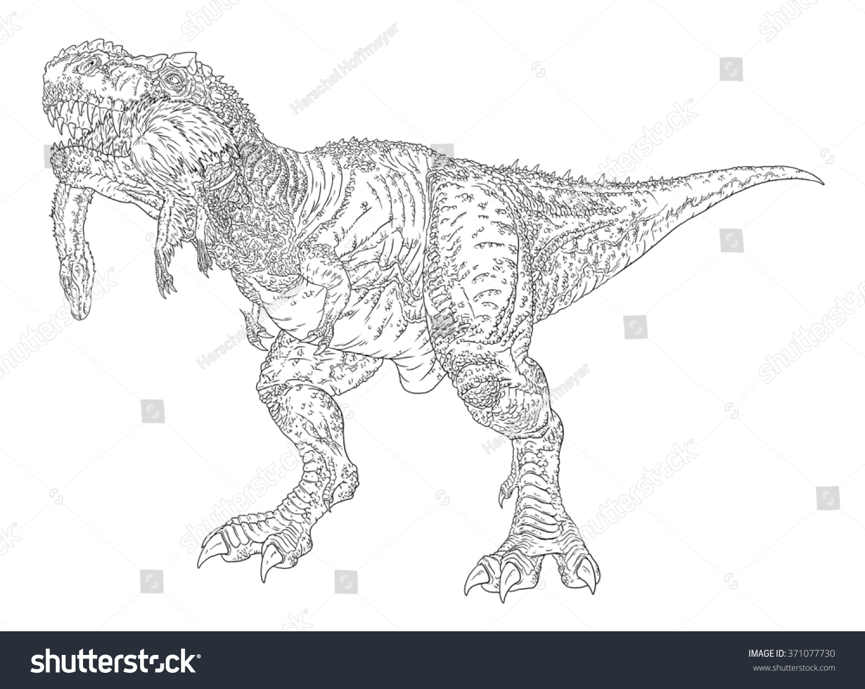 Tyrannosaurus Rex Eating Struthiomimus Line Drawing Stock ...