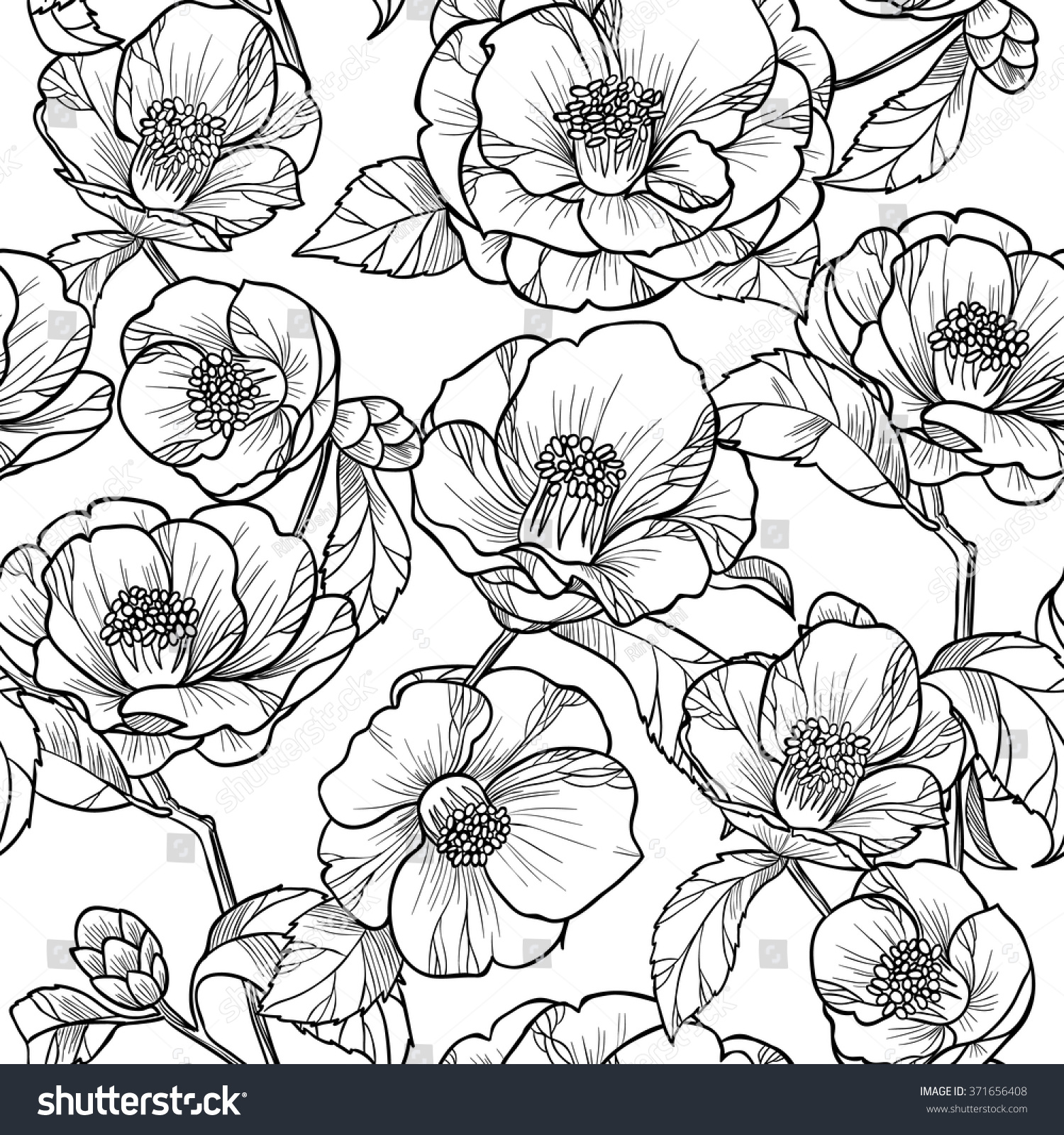 Black white flowers camelliavector seamless pattern stok vektr black white flowers camelliavector seamless pattern stok vektr 371656408 shutterstock mightylinksfo