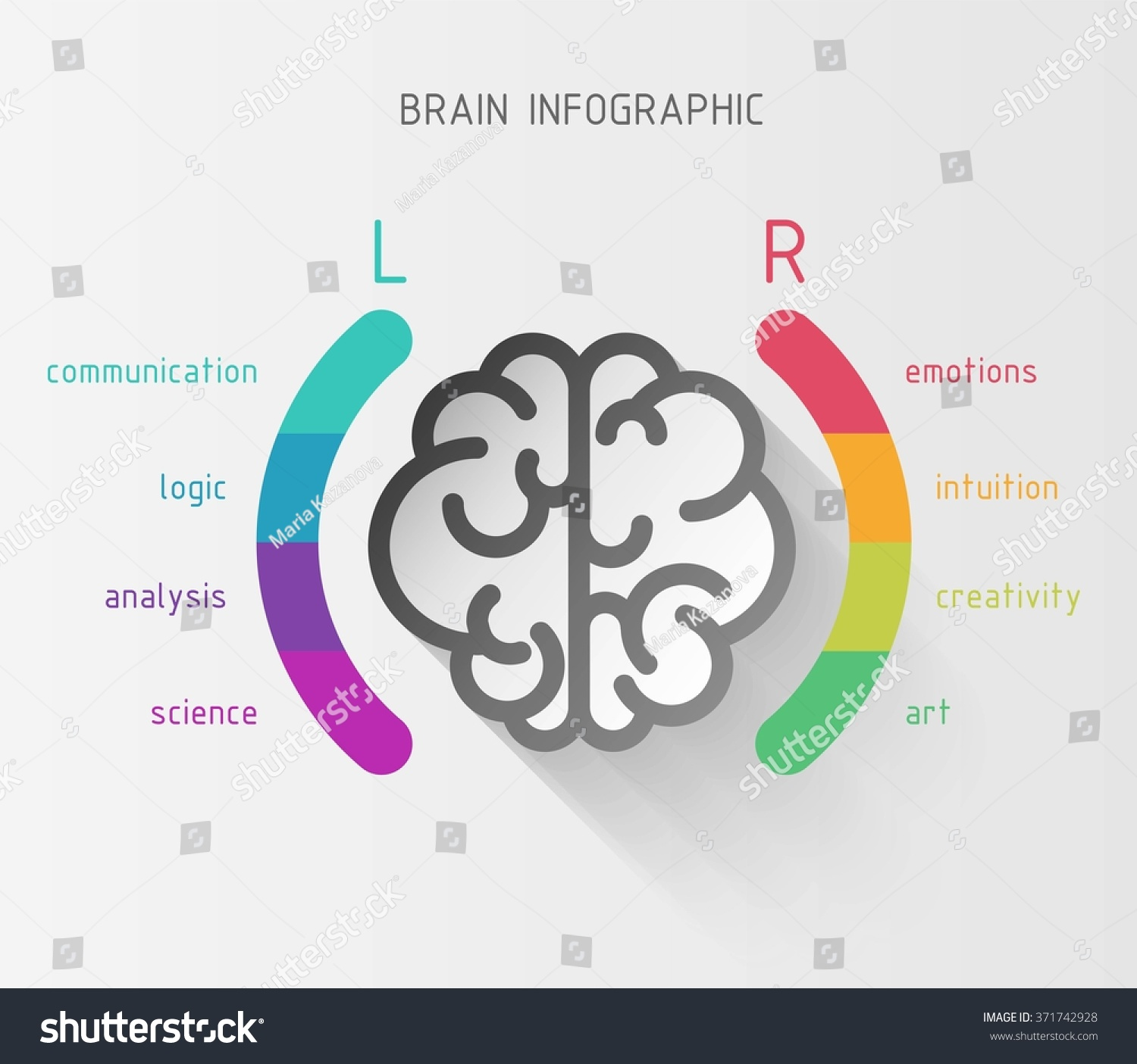 Vector Flat Brain Infographic Paper Sign Stock Vector Royalty Free