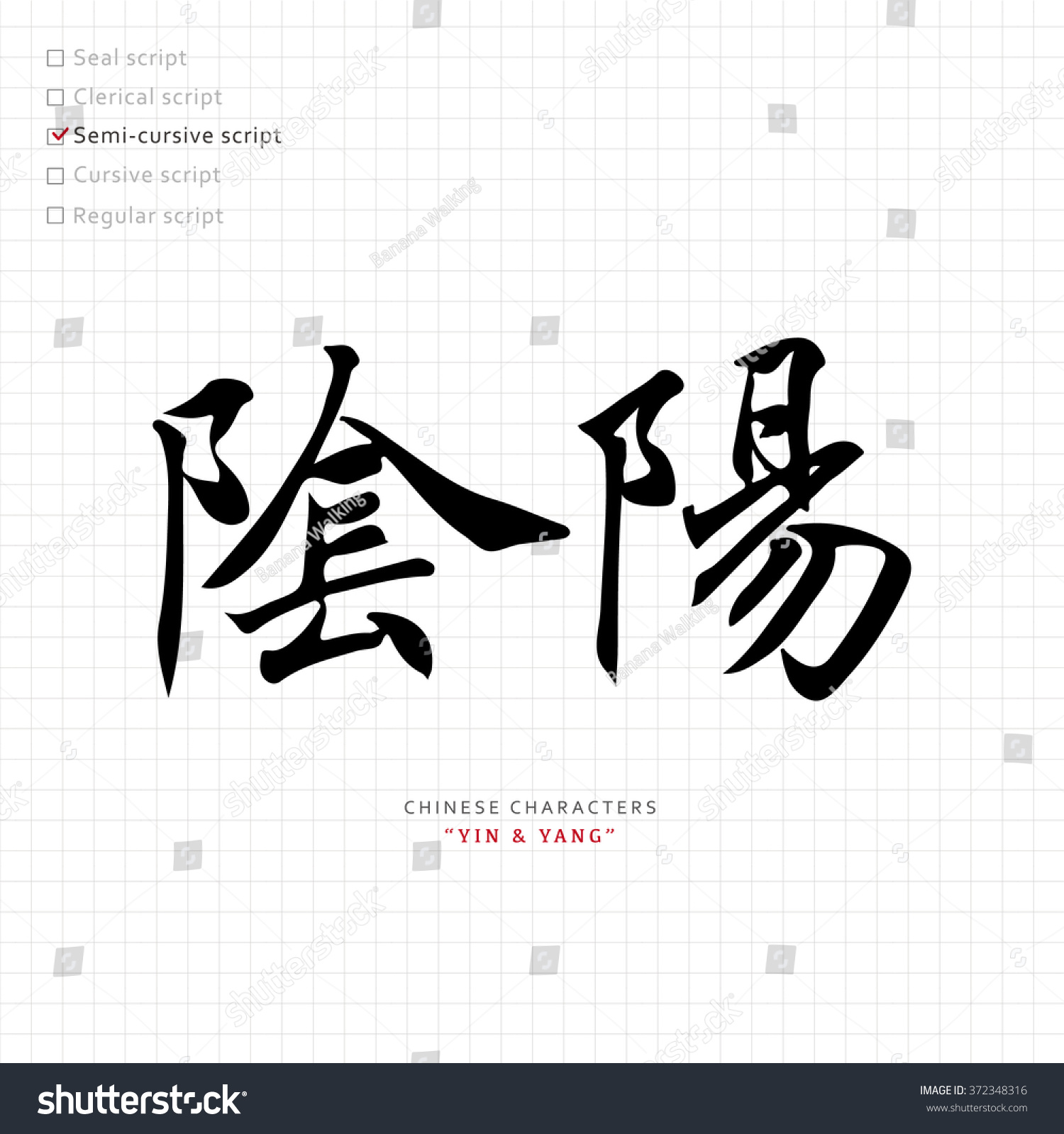 vector chinese letter calligraphy hieroglyph scripts collection writing brush translation meaning ying