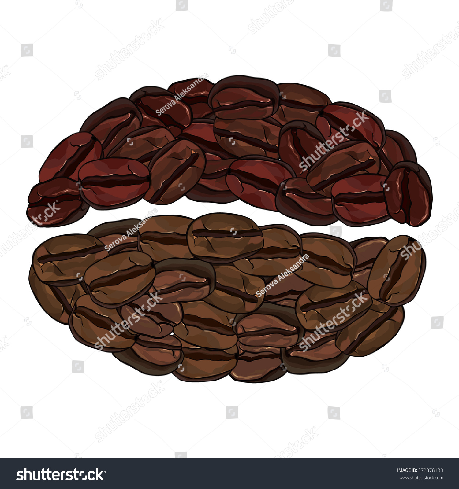 Coffee Bean Stock Vector 372378130 - Shutterstock