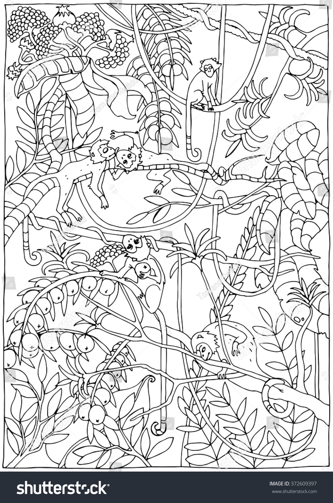 monkey jungle coloring page stock vector 372609397 shutterstock