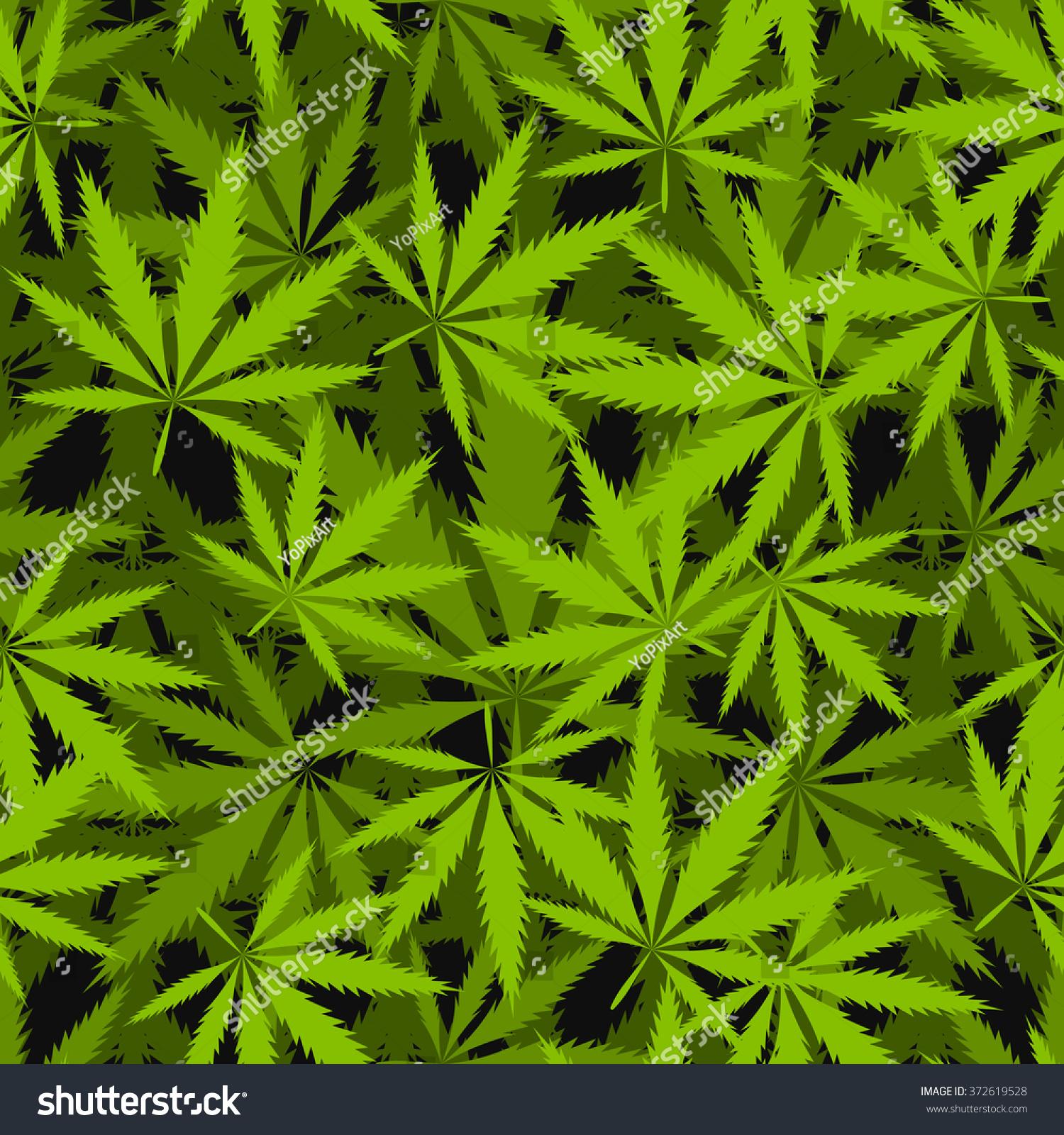 Marijuana Leaves Seamless Vector Pattern Cannabis Stock Vector ...