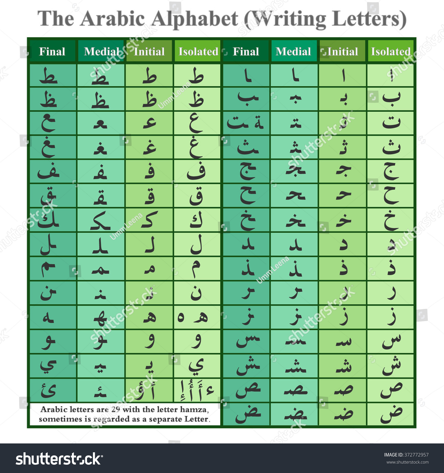 Arabic Alphabet Writing Letters Green Stock Vector ...
