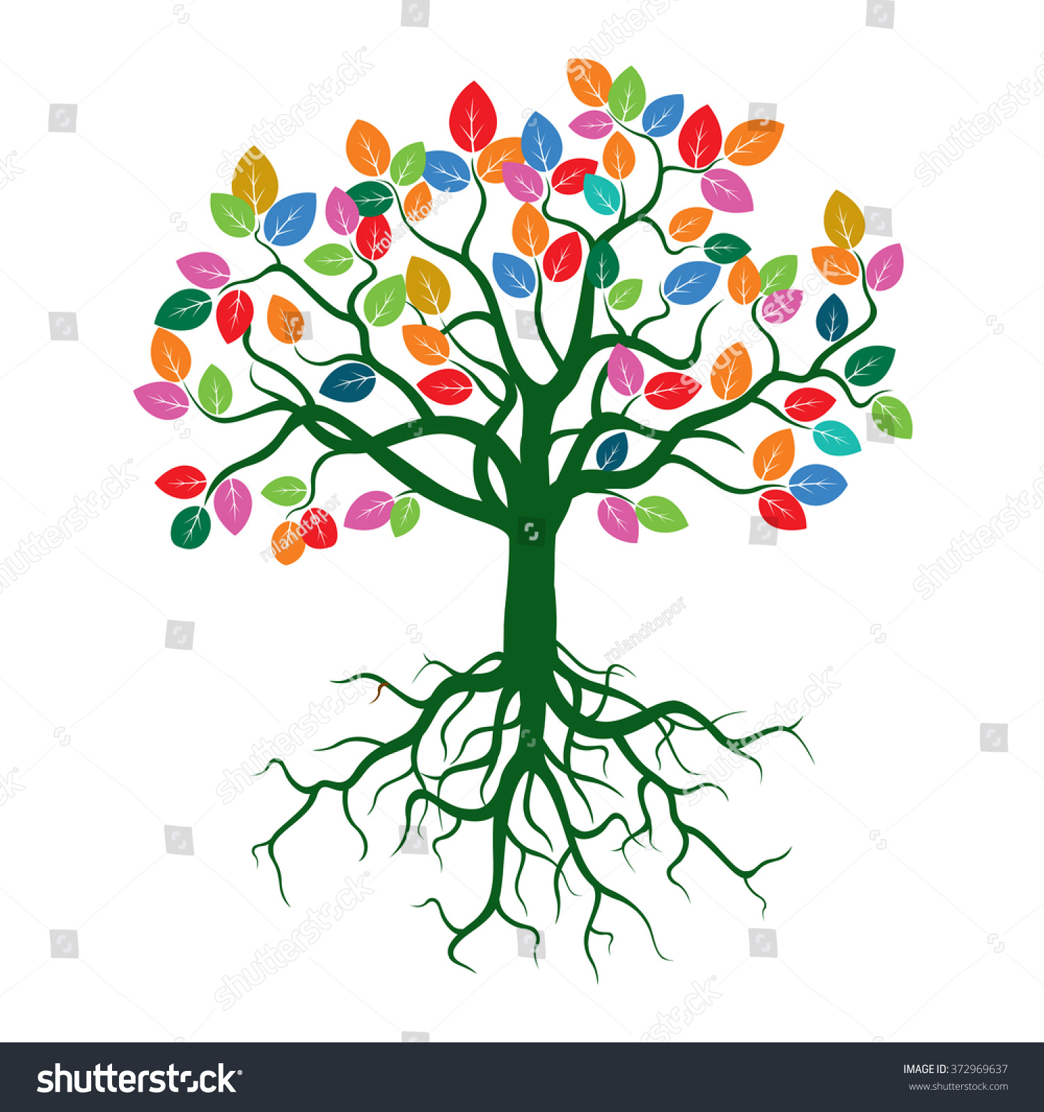 Color Tree Nd Roots Vector Illustration Stock Vector 372969637 ...