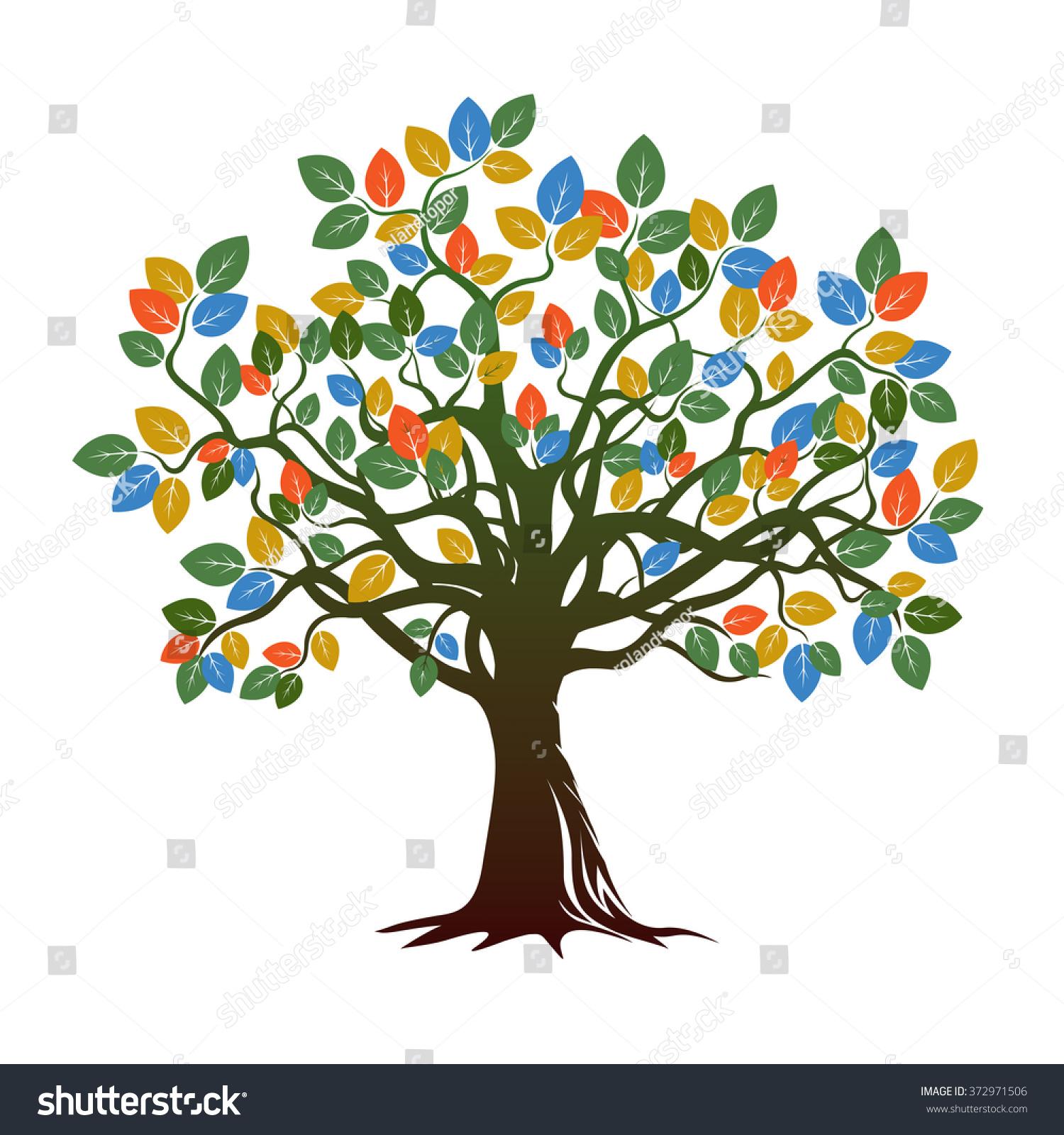 Old Color Tree Vector Illustration Stock Vector 372971506 - Shutterstock