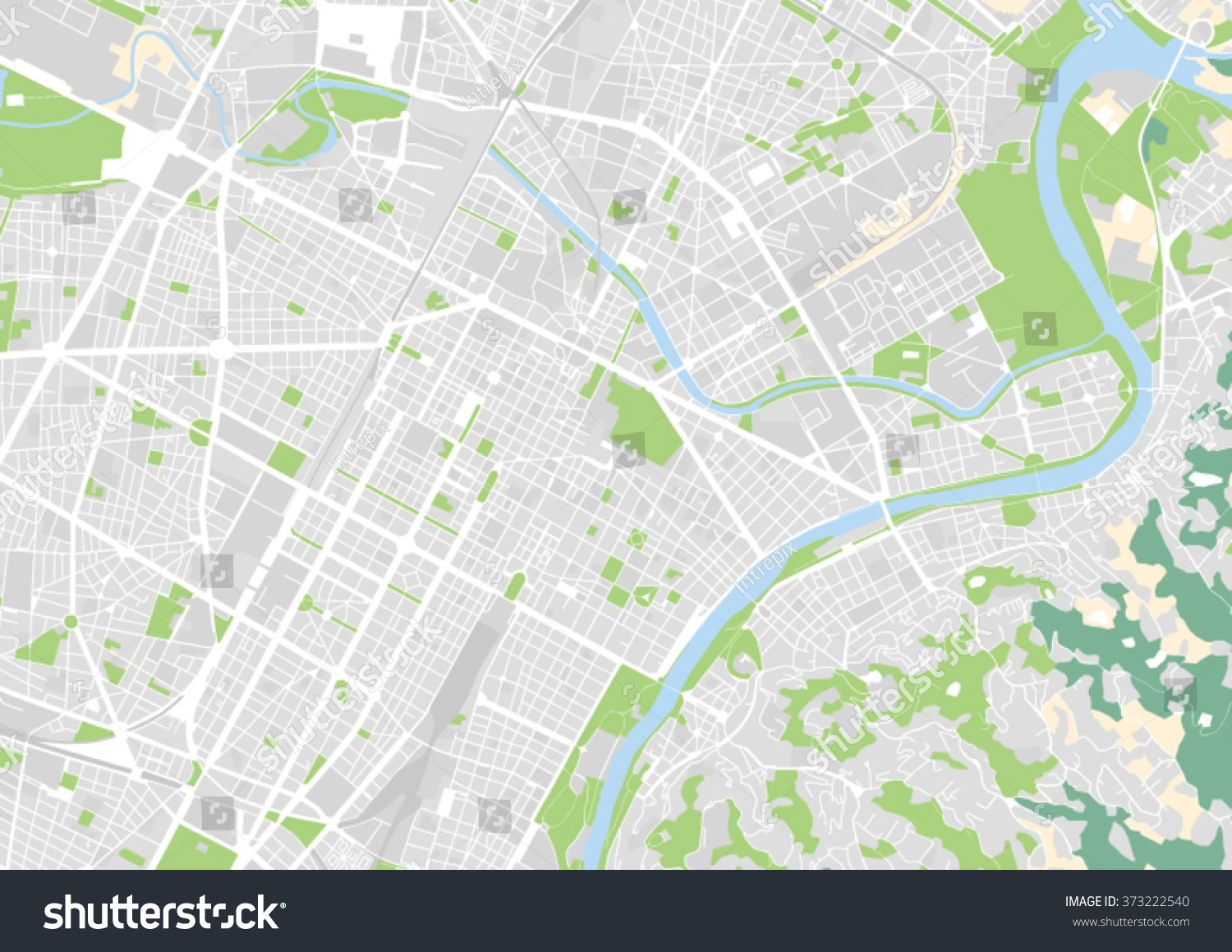 vector city map of Turin Italy