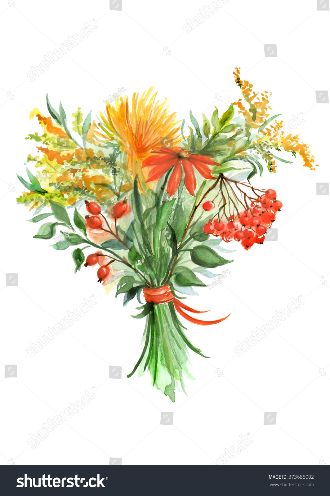 Watercolor Drawing Autumn Bouquet Sunflowers Dogrose Stock Illustration 373685002