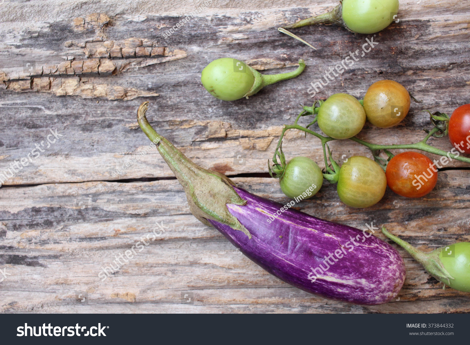 Mix of tomato with purple eggplants on the wood background
