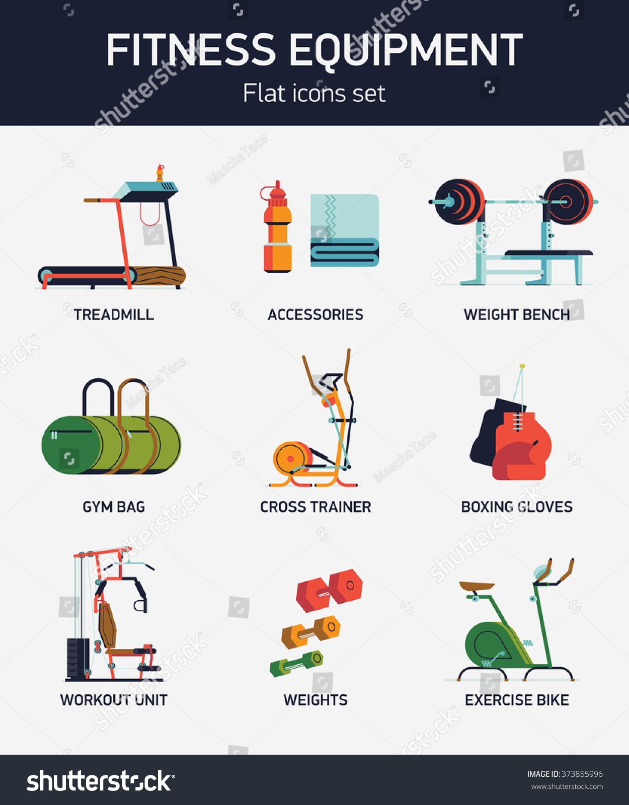 Cool fitness gym exercise equipment items stock vector 373855996 cool fitness gym exercise equipment and items with names vector flat design web icons with weight biocorpaavc Images