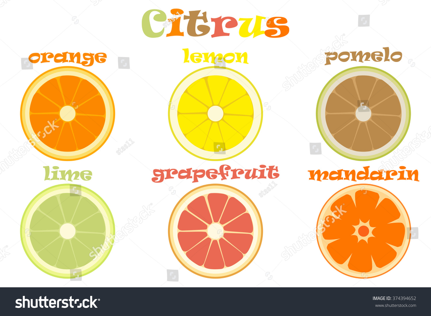 Types Of Fruits With Images - Best Image Atlproms.com