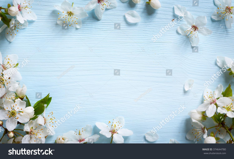 Spring border background with white blossom #374644780