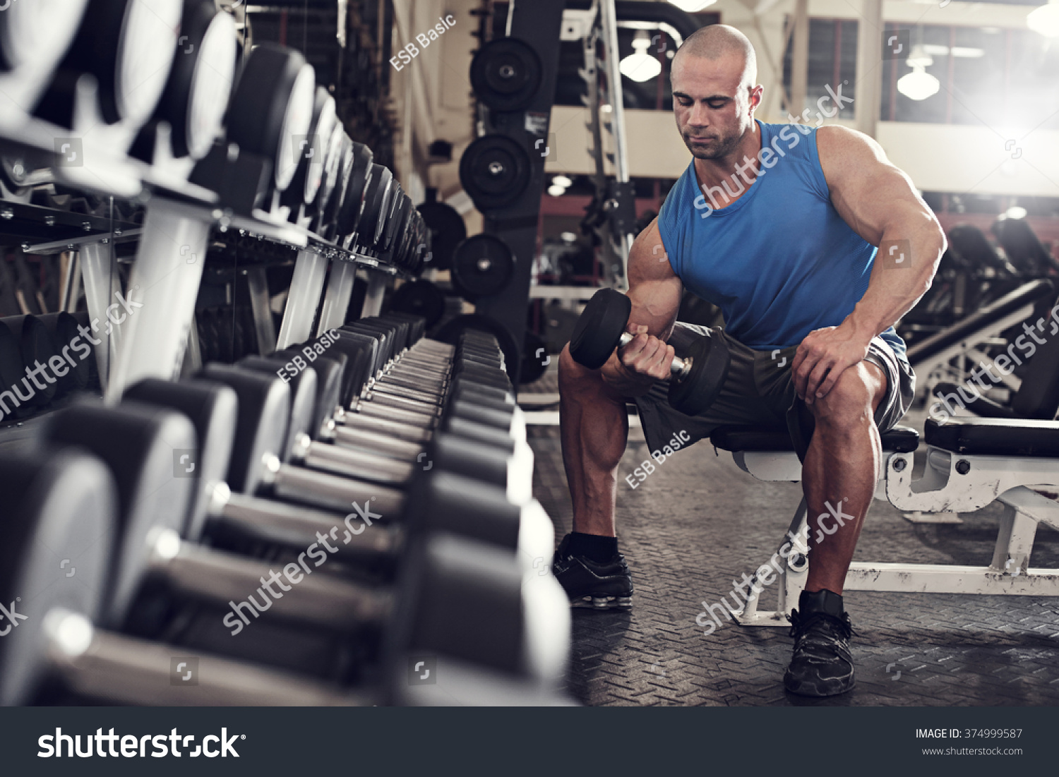 Bodybuilder Working Out Bumbbells Weights Gym Stock Photo ...