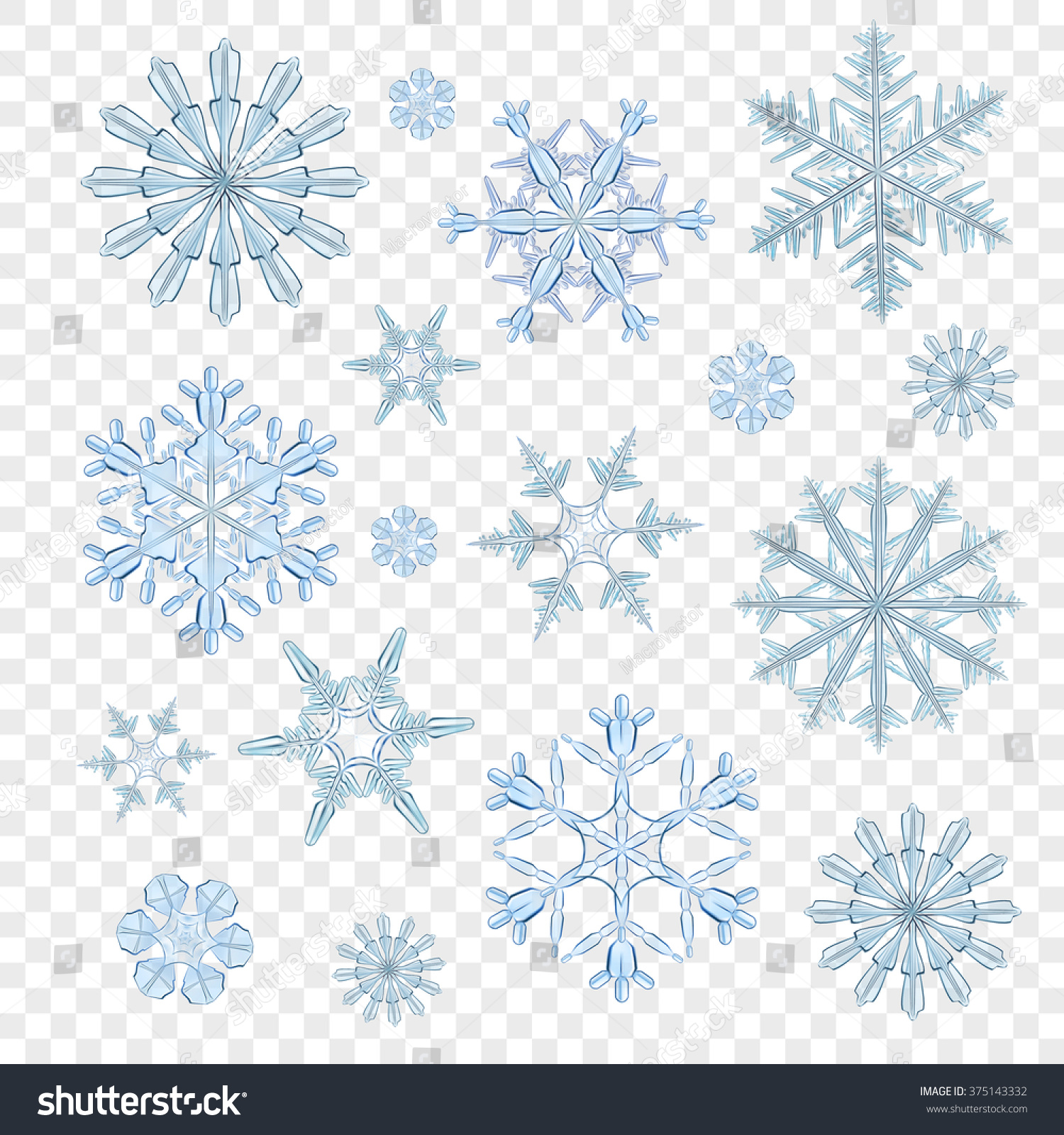 Best snowflakes vector collection isolated on