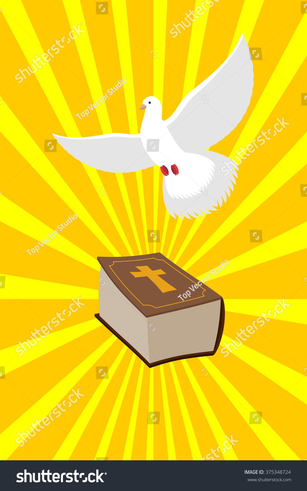 Bible white dove symbols christianity old stock vector 375348724 bible and white dove symbols of christianity old holy book of new testament and bird biocorpaavc