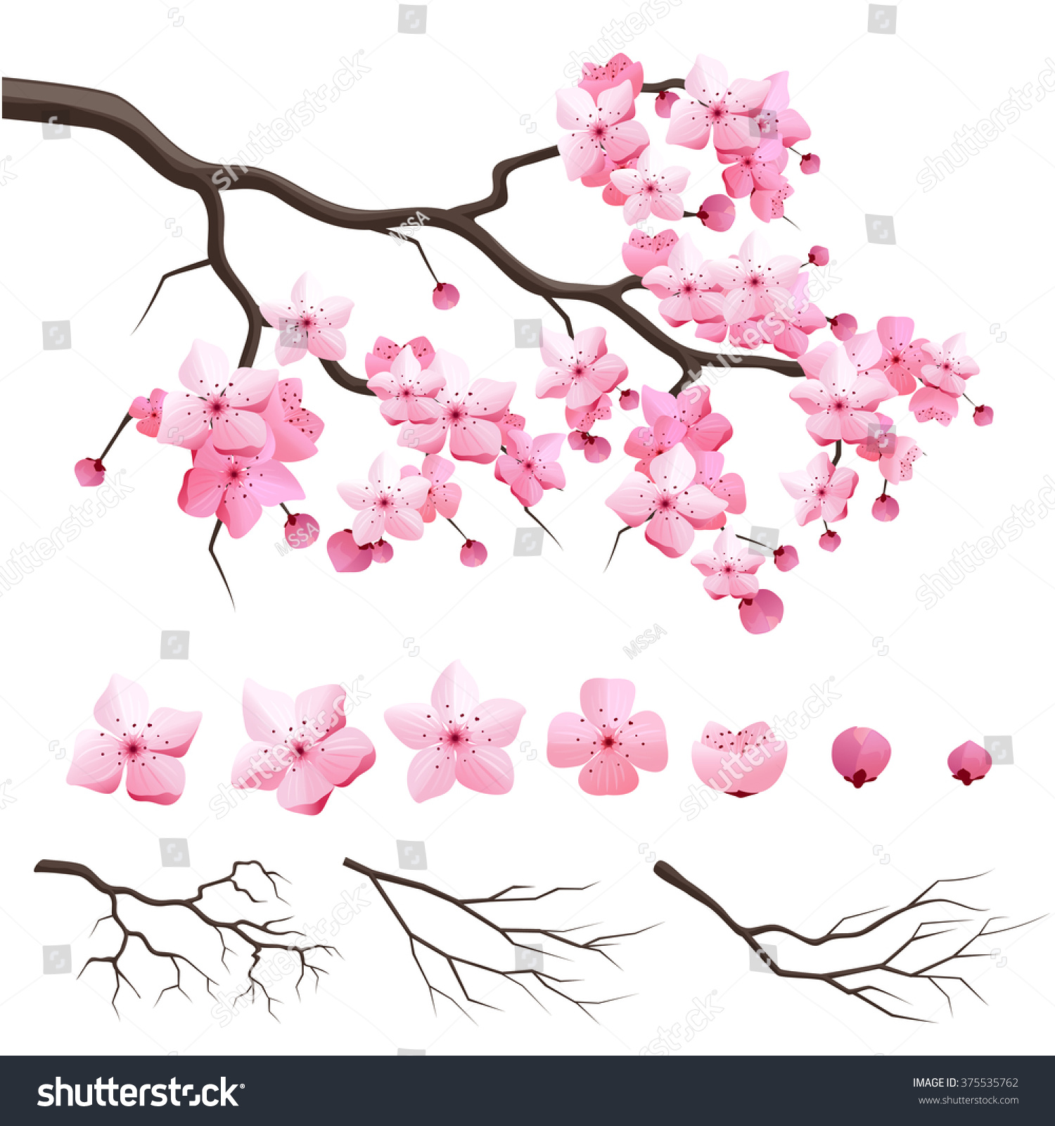 Design Japan Sakura Cherry Branch Blooming Stock Vector 375535762 ...