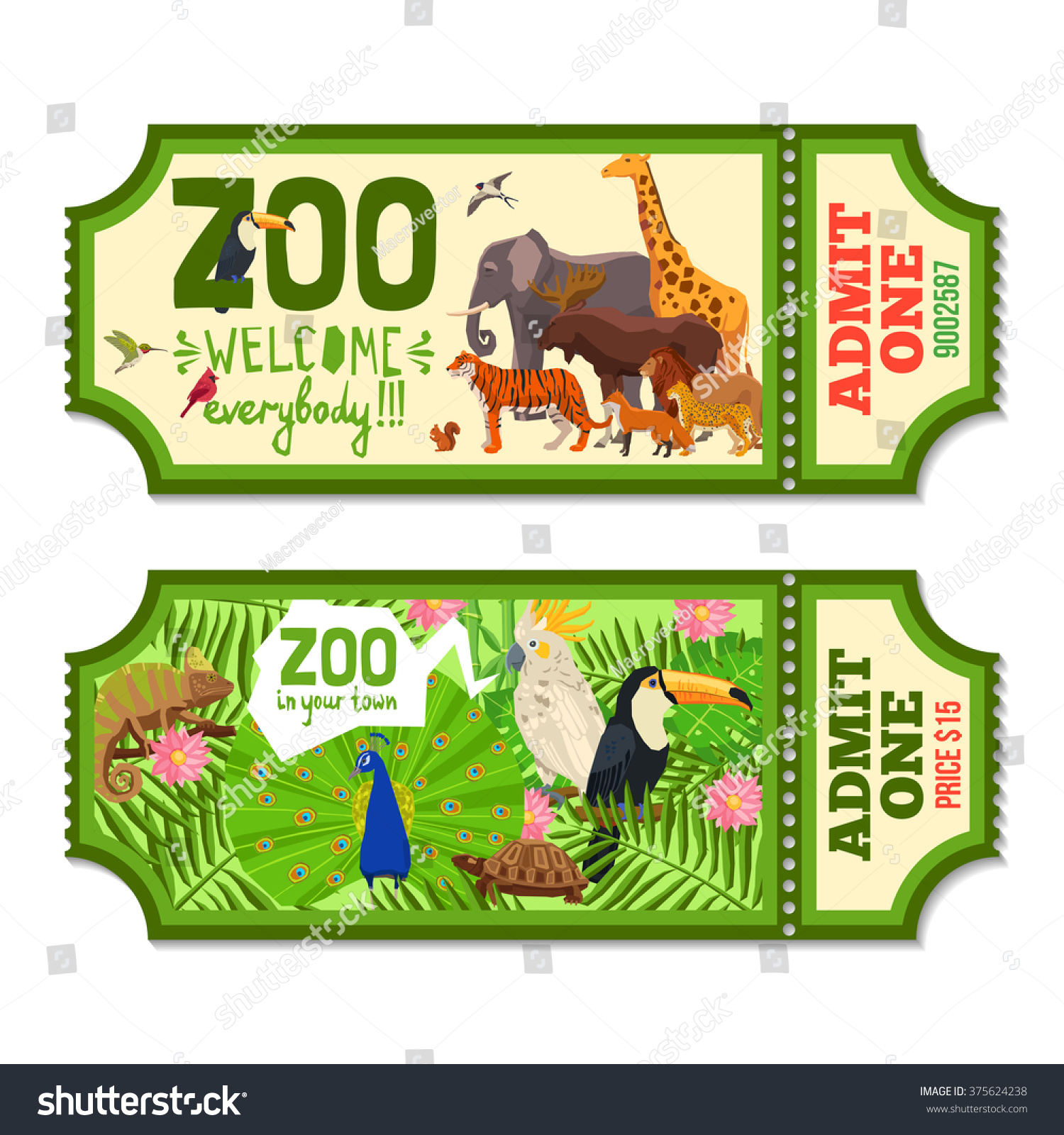 Colorful Zoo Tickets With Tropical Plants Exotic Birds And African