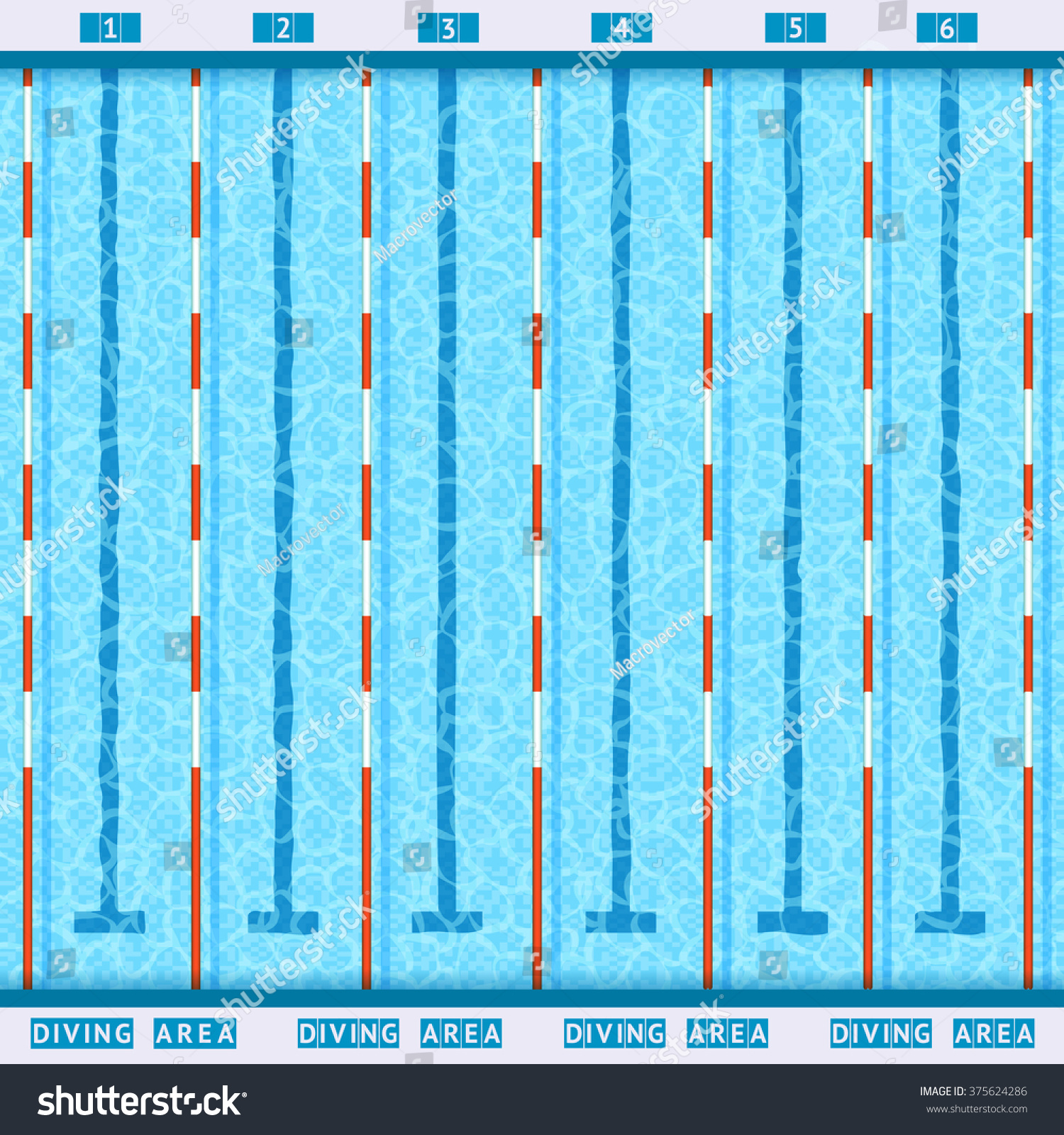 olympic swimming pool deep bath lanes top view flat pictogram with clean transparent blue water vector