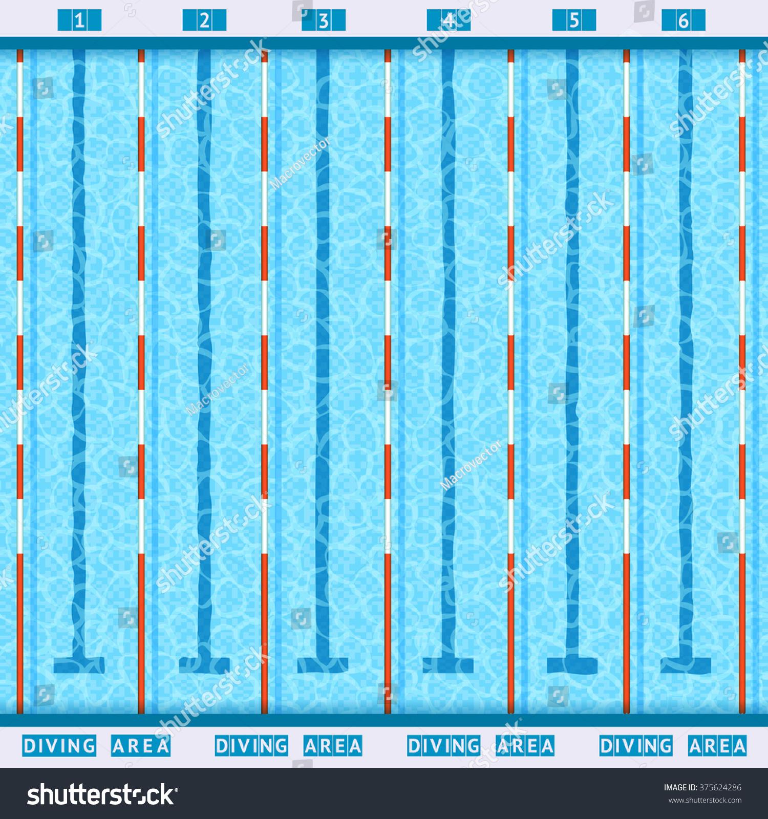 Olympic Swimming Pool Deep Bath Lanes Stock Vector 375624286 Shutterstock