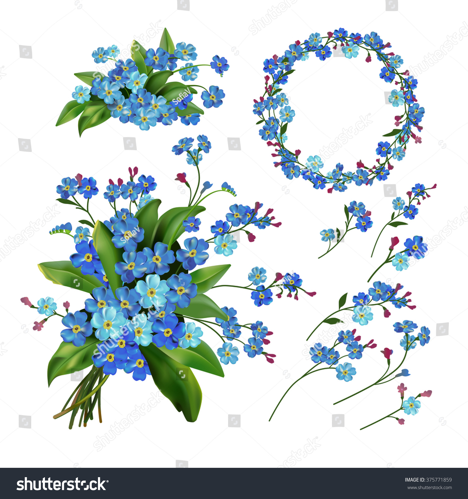 Royalty Free The Set Of Spring Flowers Forget Me 375771859 Stock
