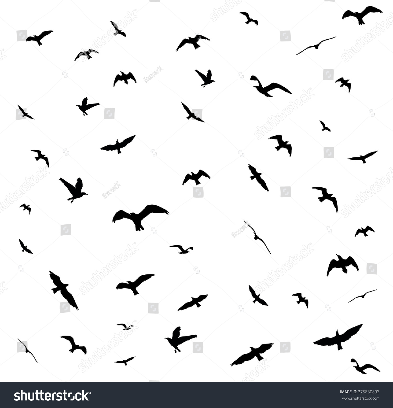 Stock Vector Flying Birds Silhouettes On White Background Vector Illus...