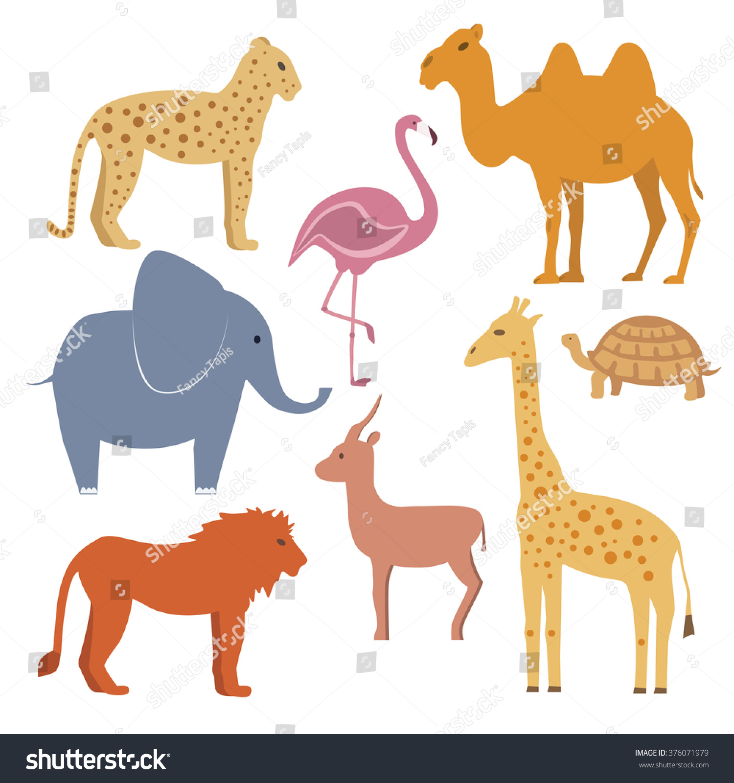 Animals Set Including Giraffe Turtle Elephant Animals Wildlife
