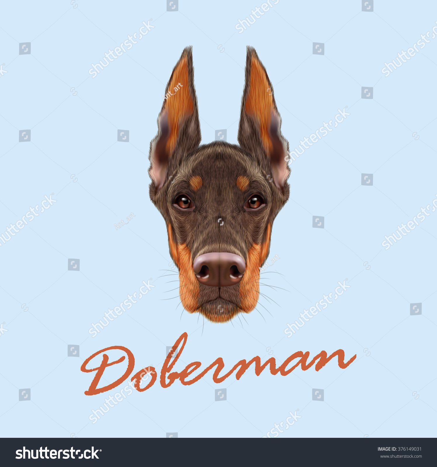 Doberman Pinscher Dog Vector Illustrated Portrait Stock Vector Royalty Free 376149031