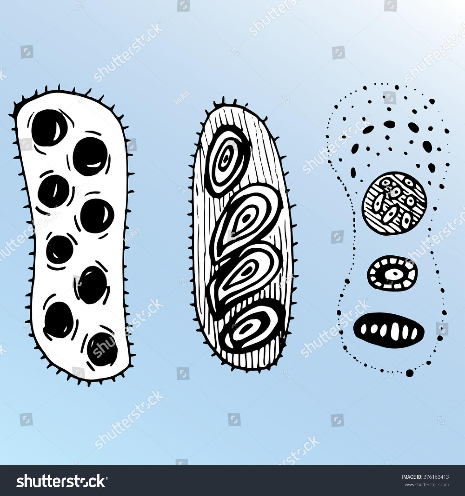 bacteria cells line art virus cartoon stock vector royalty free 376163413 https www shutterstock com image vector bacteria cells line art virus cartoon 376163413