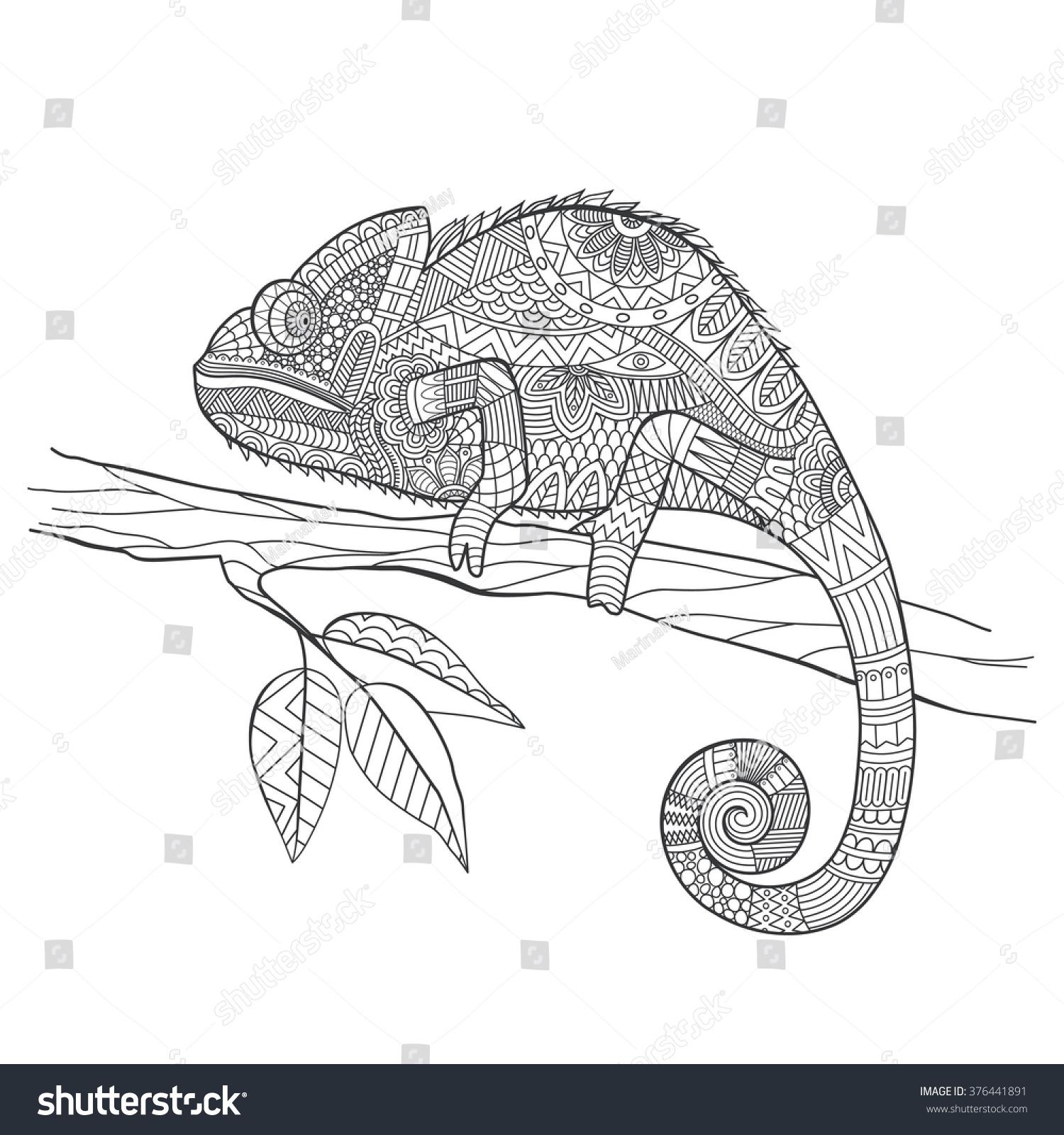 Hand Drawn Chameleon Zentangle Style For Coloring Bookshirt Design Effect Logotattoo