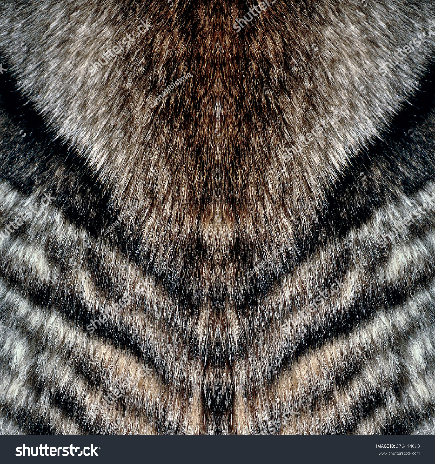 Royalty-free Wolf fur Wolf fur texture for background ...
