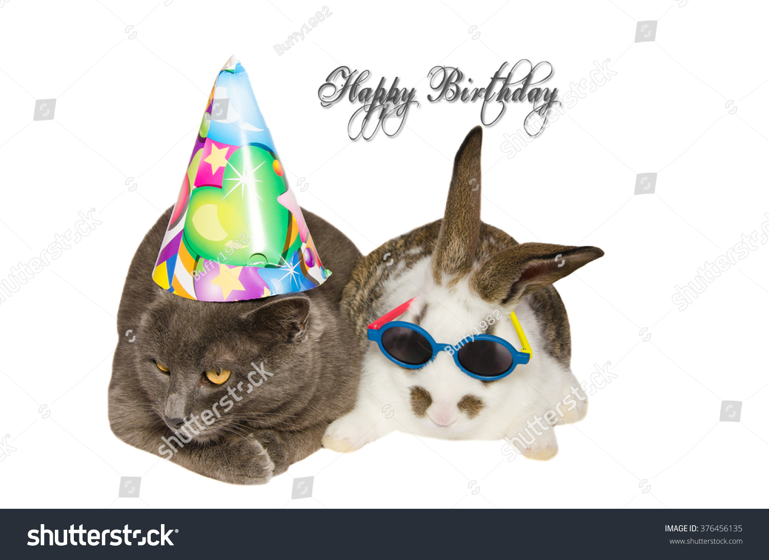 Party Pets With Funny Cat And Bunny Happy Birthday Card Animals Isolated On White