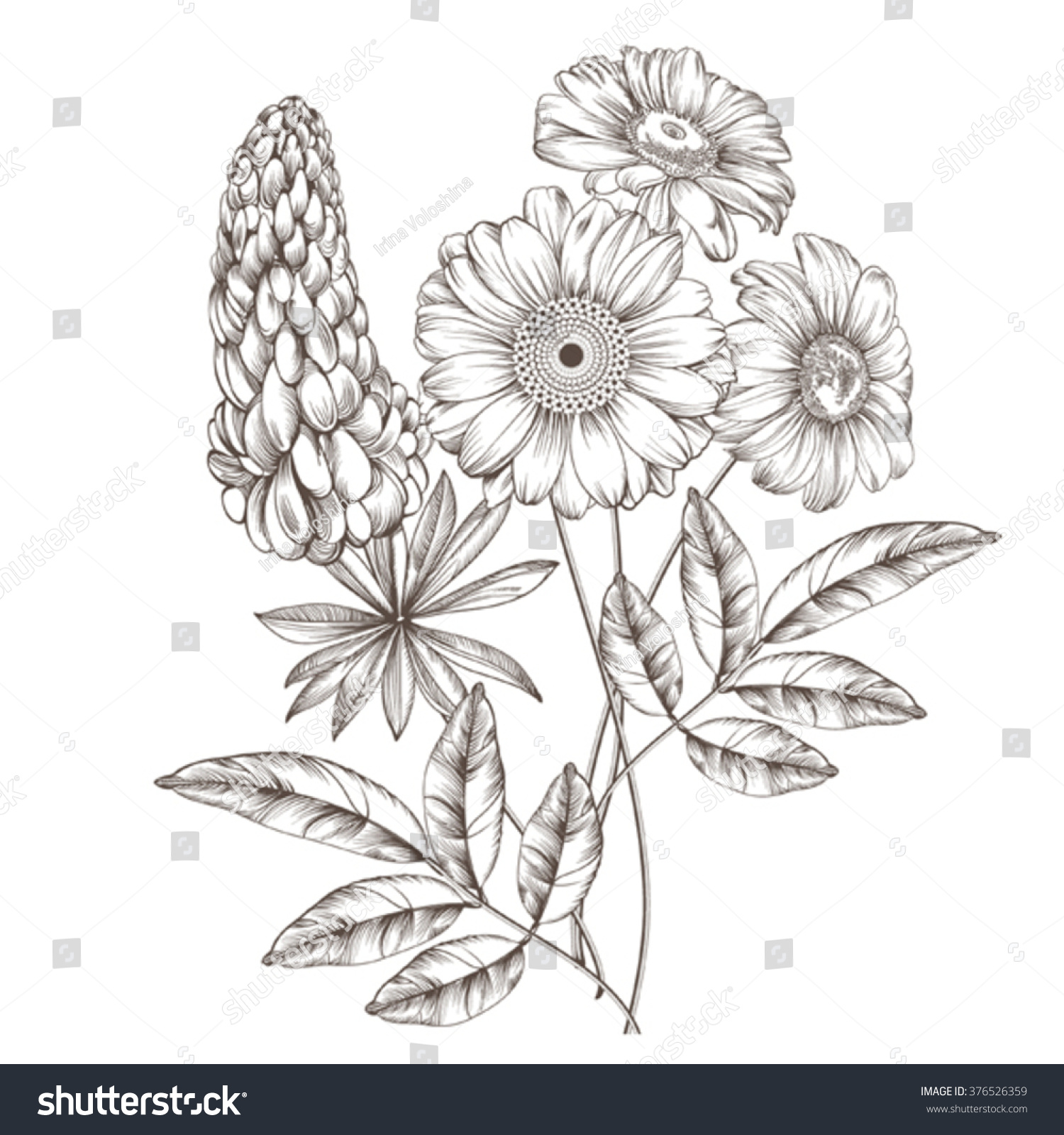 83 Wildflower Coloring Book Drawing Snapdragon Line Art