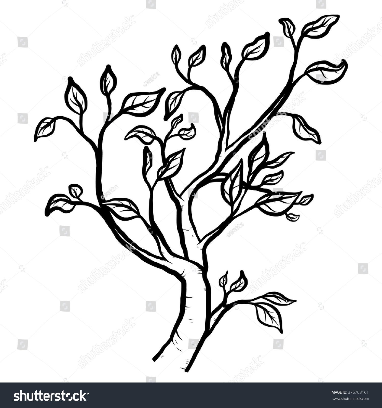 how to draw a branchy tree