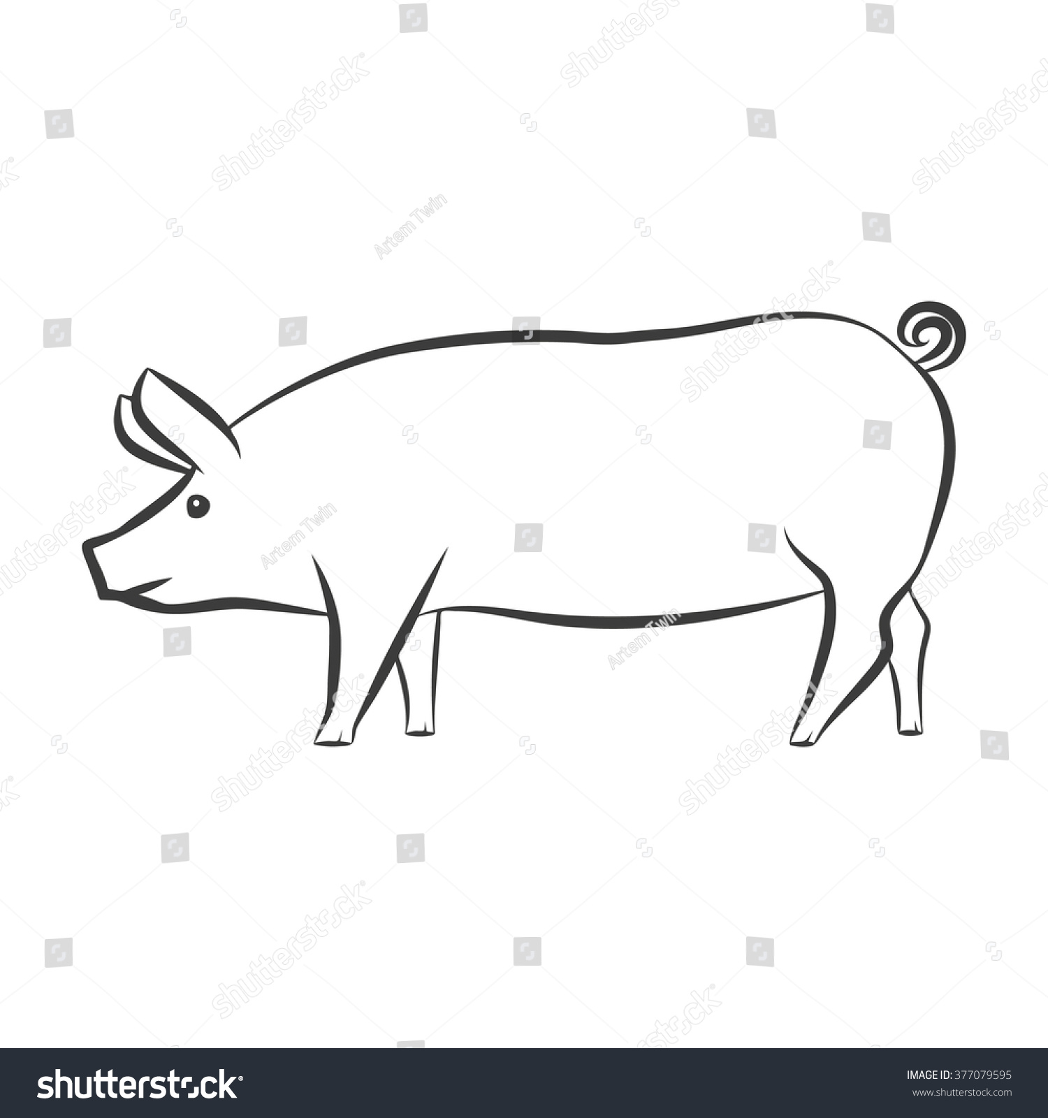 Contour Line Drawing Animal : Pig snout farm drawing animal vector stock