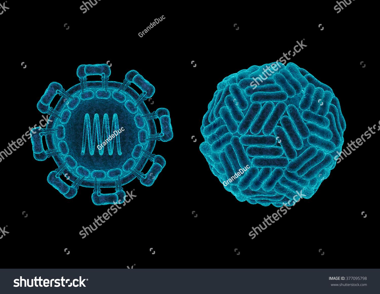 Zika Virus Structure Concept 3d Render Stock Illustration ...