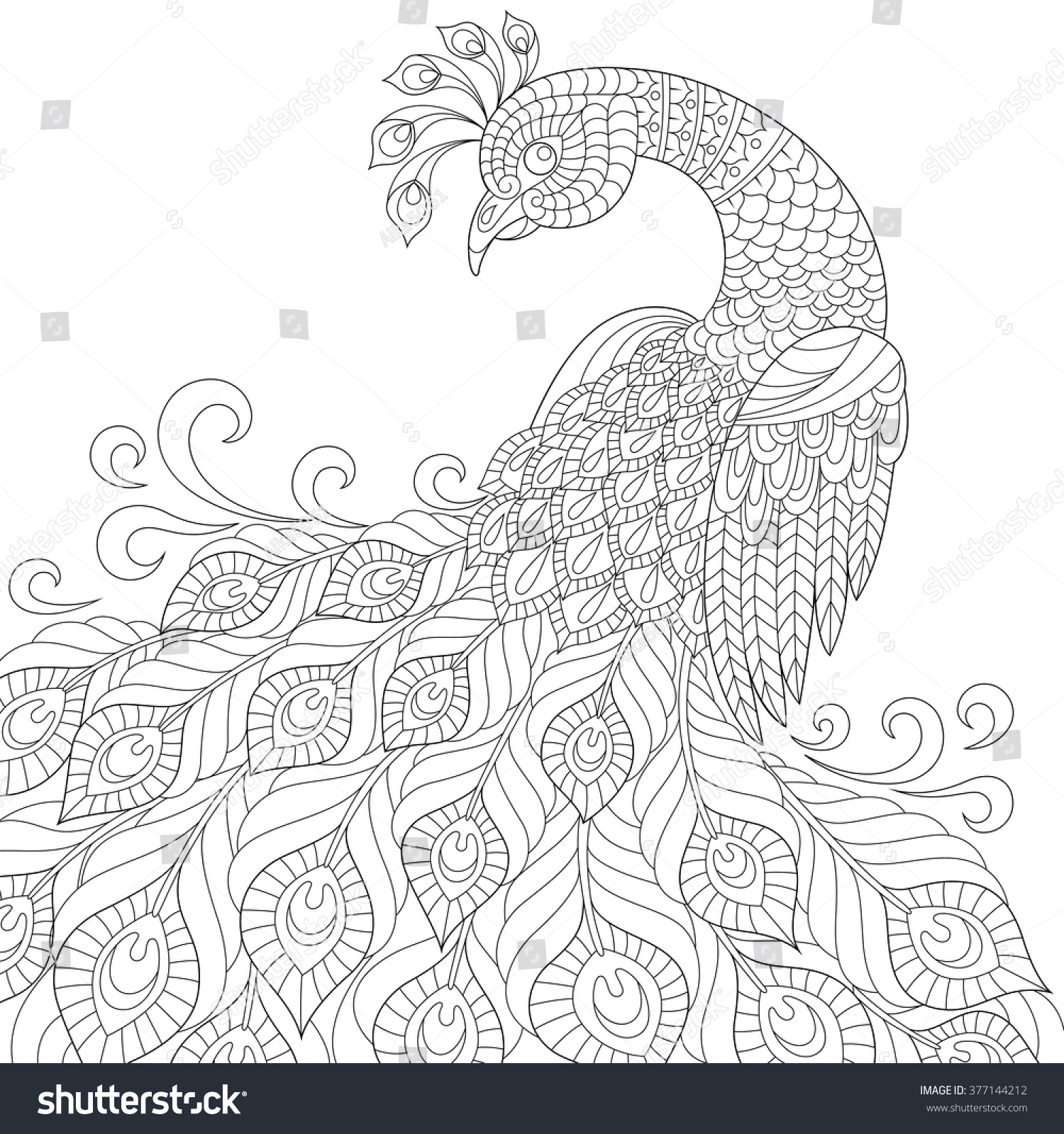 Coloring pages peacock - Decorative Peacock Adult Anti Stress Coloring Page Black And White Hand Drawn Doodle