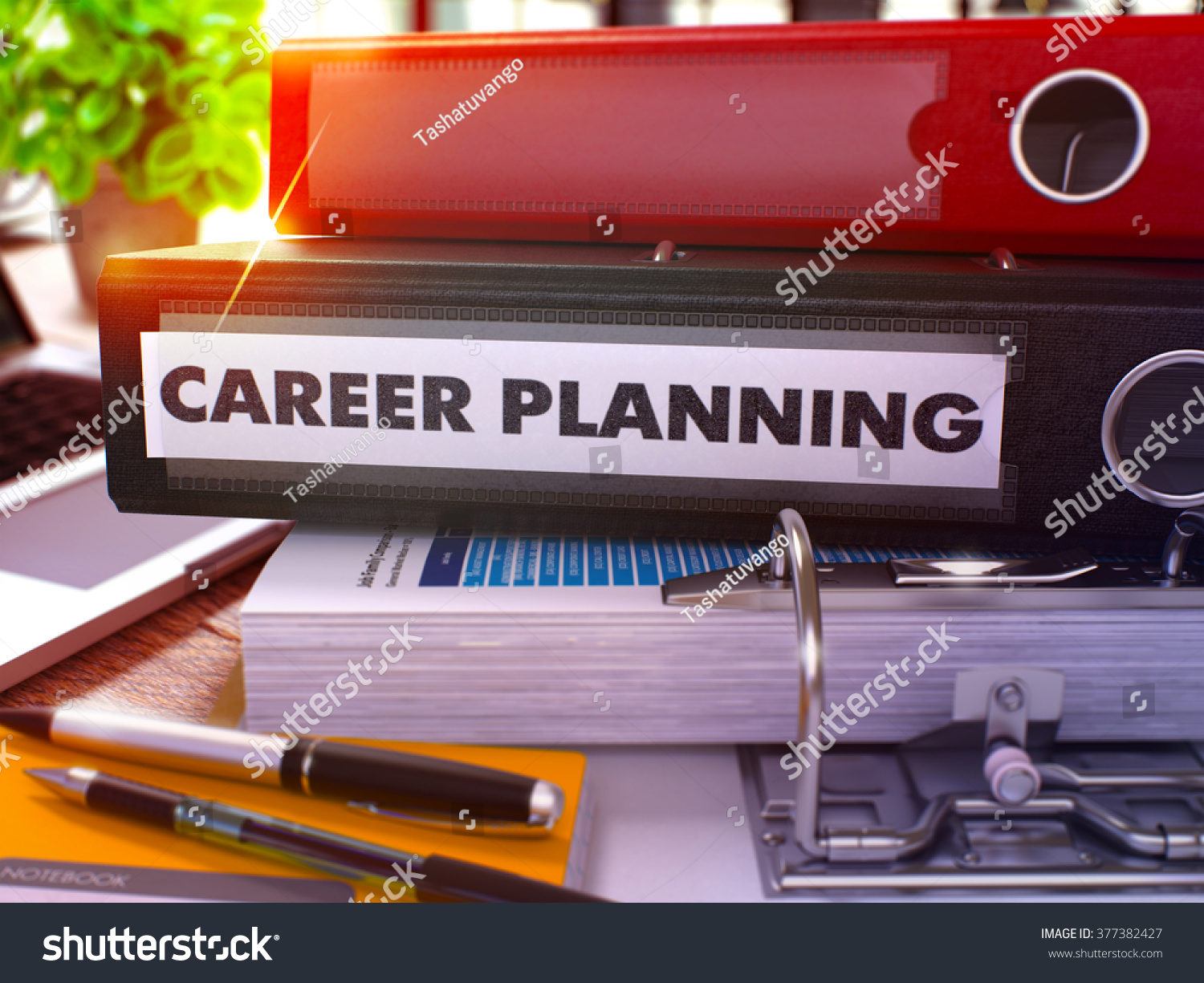 career planning black office folder on background of working save to a lightbox