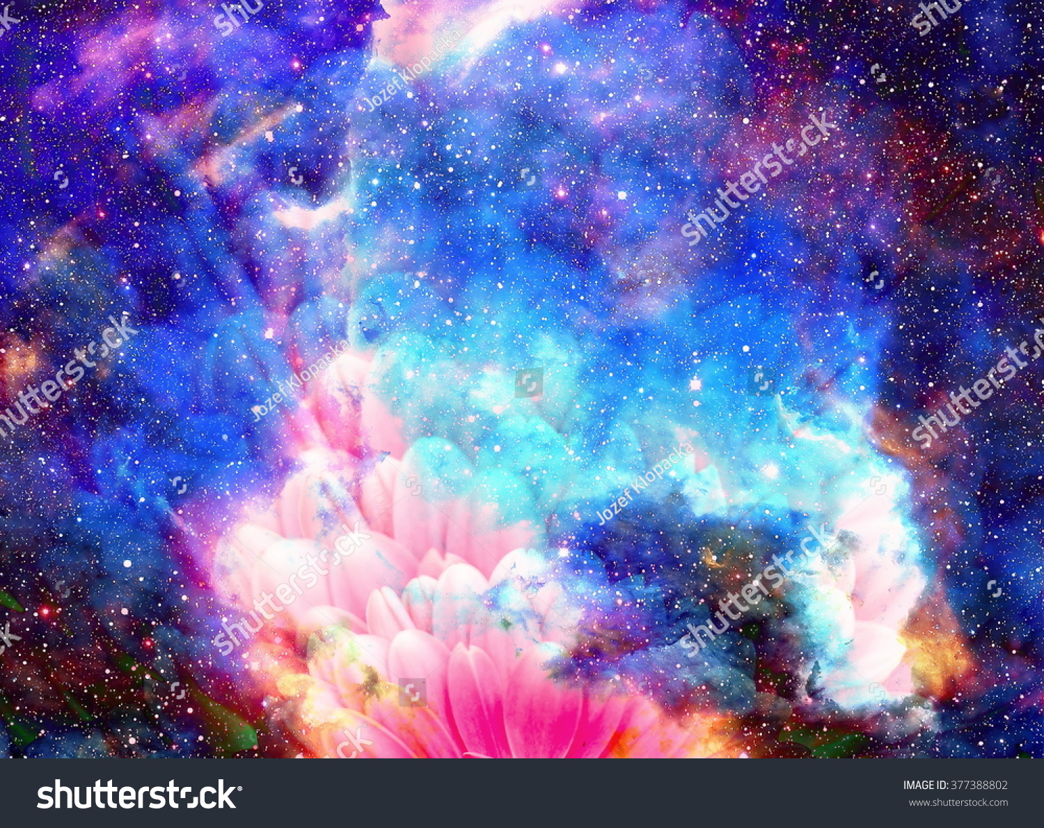 Space Stars Flower Color Galaxy Background Stock
