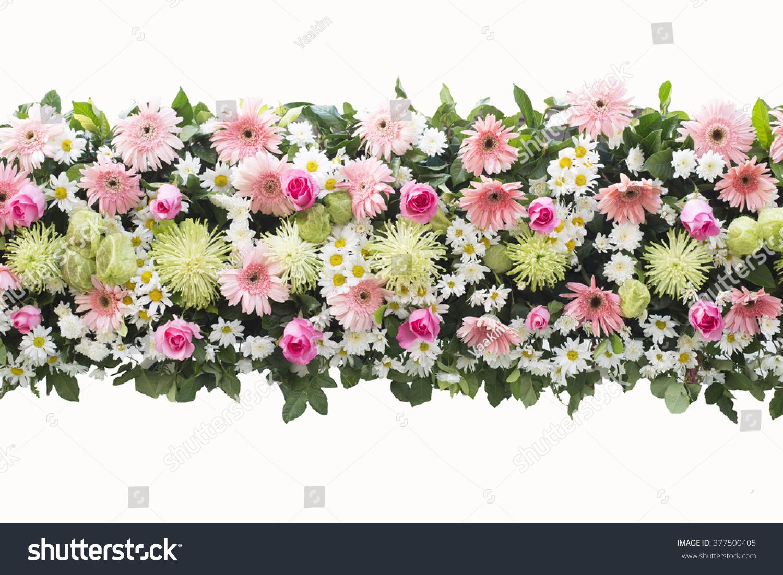 Bunch flowers isolated on white background stock photo edit now bunch flowers isolated on white background mightylinksfo