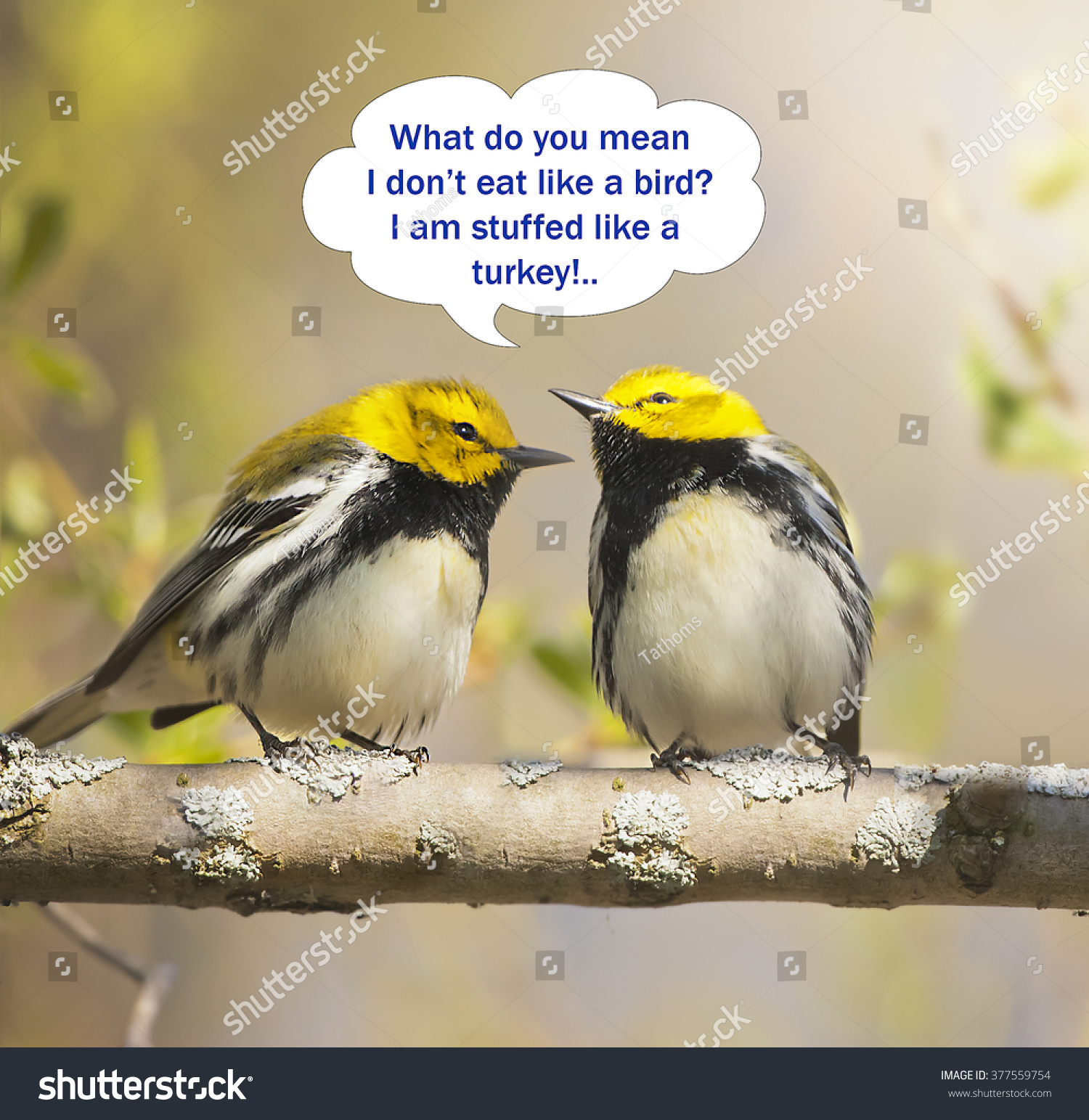 stock-photo-green-warbles-stuffed-with-b