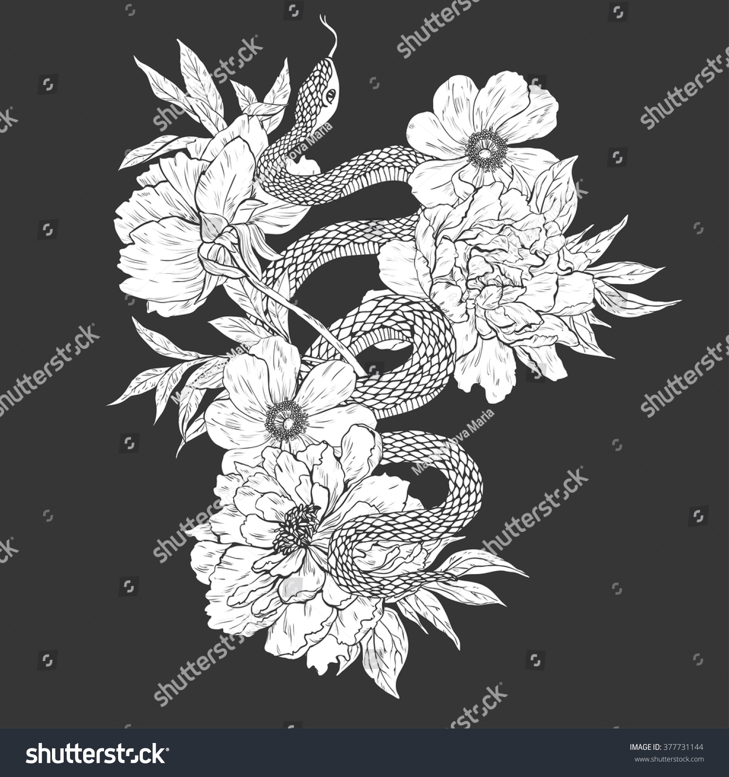 Snakes And Flowers Tattoo Art Coloring Books Hand Drawn Vintage Vector Illustration Isolated